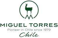 logo CHILE.jpg